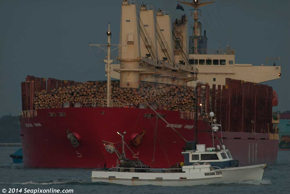 African Swan, Orient Bulker, Wakanui (IS2024) 9303364 ID 9514